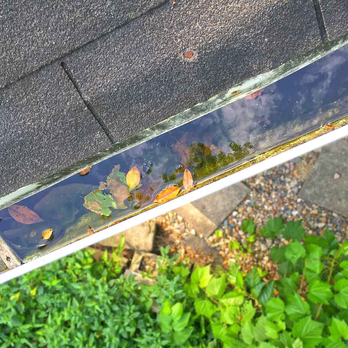 A clogged gutter causing major damage on an Clive, Iowa home