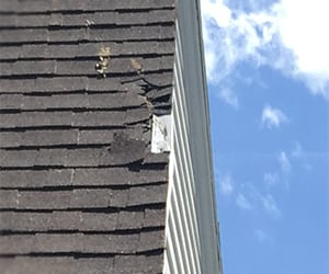 wind damage on roof edge