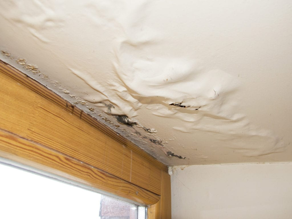 Clogged gutters can cause rainwater can pool back onto the roof. This puts your roof at risk for leaks that can result in costly water damage.