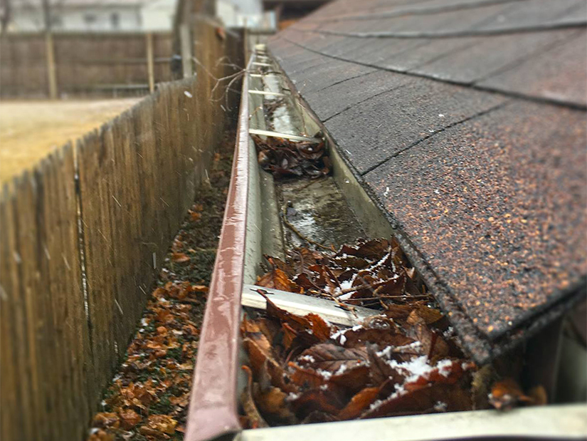 clogged gutter in spring and fall
